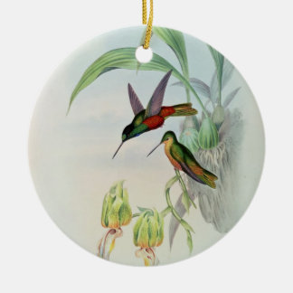 Bonaparte's Star Fronted Hummingbird (coloured lit Christmas Ornament