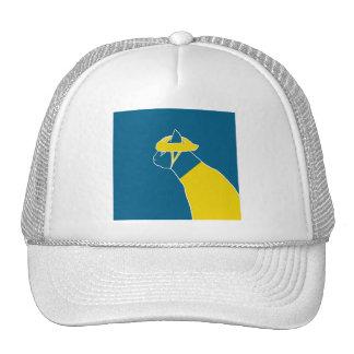 bonchat (yellow jacket) hat