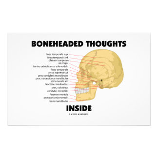 Boneheaded Thoughts Inside (Anatomy Humor) Personalised Stationery