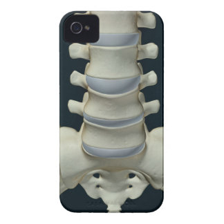 Bones of Lumbar Vertebrae 2 iPhone 4 Cover