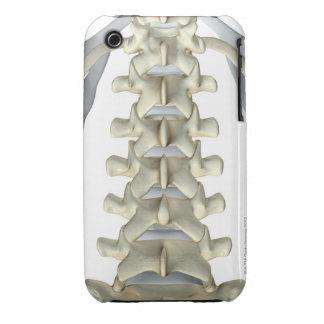 Bones of Lumbar Vertebrae iPhone 3 Cases