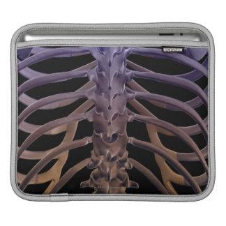Bones of the Back iPad Sleeve