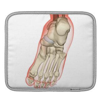 Bones of the Foot 11 iPad Sleeve