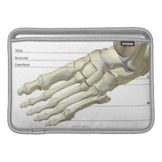 Bones of the Foot 15 MacBook Sleeve