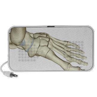 Bones of the Foot 2 Mp3 Speaker