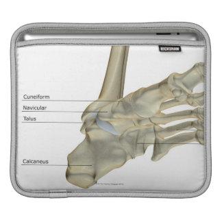 Bones of the Foot 4 iPad Sleeve