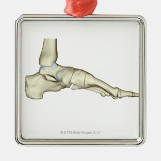 Bones of the Foot 7 Christmas Ornament