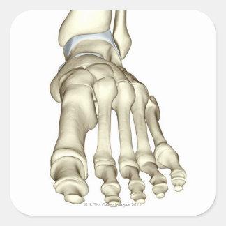 Bones of the Foot 8 Square Sticker