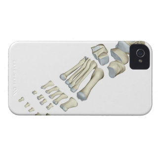 Bones of the Foot 9 Case-Mate iPhone 4 Case