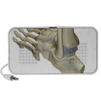 Bones of the Foot Notebook Speakers