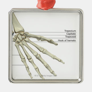 Bones of the Hand Silver-Colored Square Decoration
