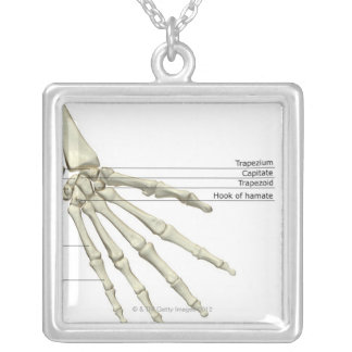 Bones of the Hand Silver Plated Necklace