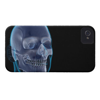 Bones of the Head 2 iPhone 4 Cover