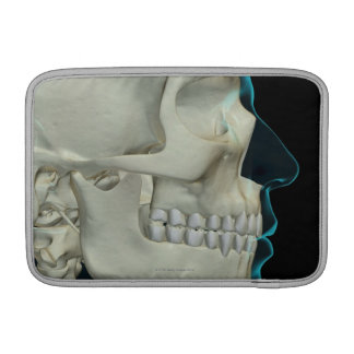 Bones of the Head and Face 2 Sleeve For MacBook Air