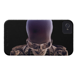 Bones of the Head and Face 3 iPhone 4 Covers