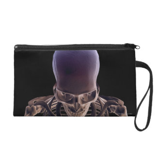 Bones of the Head and Face 3 Wristlet Purses