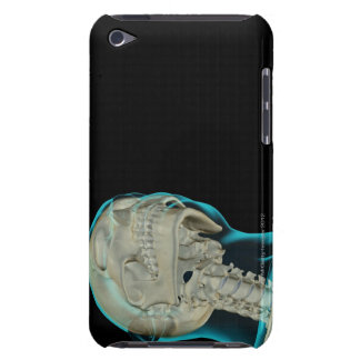 Bones of the Head and Neck 5 Case-Mate iPod Touch Case