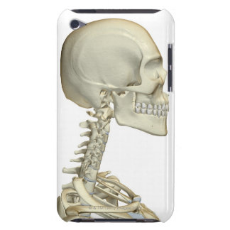 Bones of the Head and Neck 6 Case-Mate iPod Touch Case