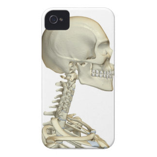 Bones of the Head and Neck 6 iPhone 4 Case-Mate Case