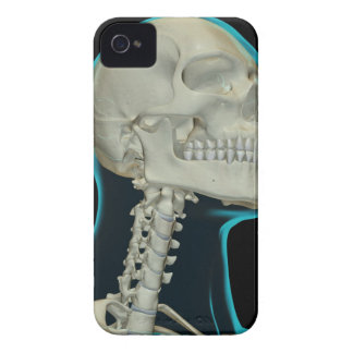 Bones of the Head and Neck 8 iPhone 4 Cover