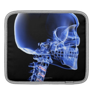 Bones of the Head and Neck iPad Sleeve