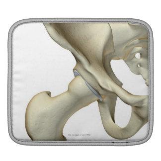 Bones of the Hip 5 iPad Sleeve