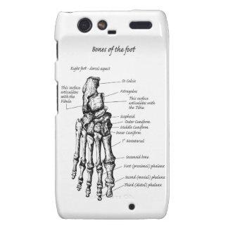 Bones of the human foot motorola droid RAZR case