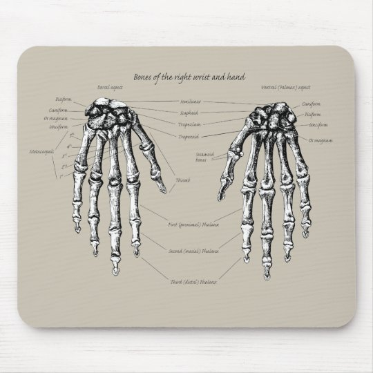 Bones of the human hand mouse mat