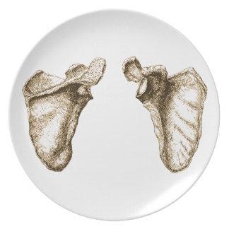 Bones of the Human Scapula Dinner Plates