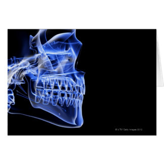 Bones of the Jaw Greeting Card