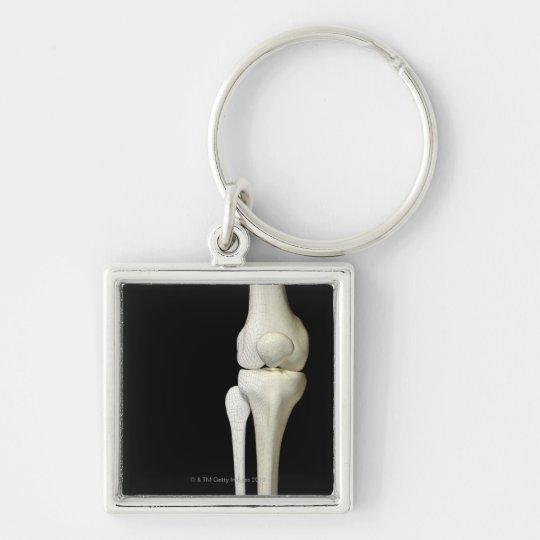 Bones of the Knee 4 Key Ring