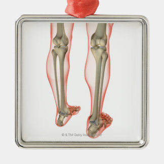 Bones of the Leg 3 Christmas Ornament