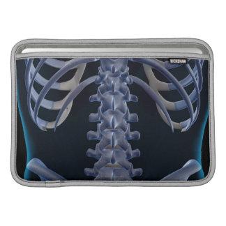 Bones of the Lower Back 2 MacBook Sleeve