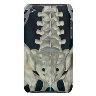 Bones of the Lower Back iPod Case-Mate Cases