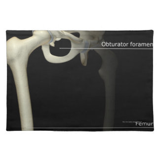 Bones of the Lower Limb Placemat