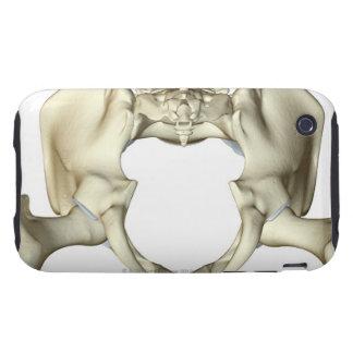 Bones of the Pelvis 4 Tough iPhone 3 Covers