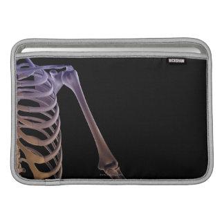 Bones of the Shoulder MacBook Sleeve