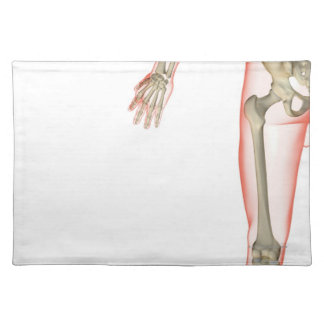 Bones of the Thigh Placemat