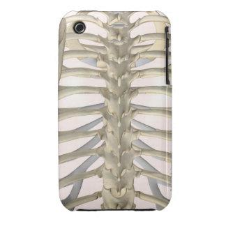 Bones of the Thoracic Vertebrae iPhone 3 Case-Mate Cases