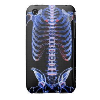 Bones of the Trunk 2 iPhone 3 Cover