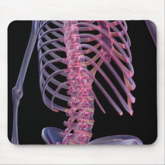 Bones of the Trunk Mousepads