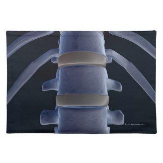 Bones of the Vertebral Column 2 Placemat