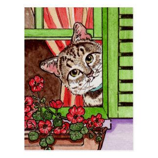 Bonjour cat postcard