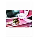 Bonjour Hamster Post Card