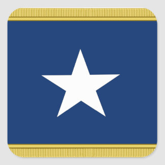 Bonnie Blue Flag First Texas Cofederate Volunteers Square Stickers