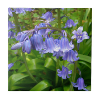 Bonnie Bluebell Small Square Tile