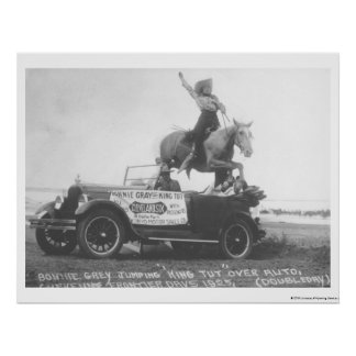 Bonnie Gray jumping her horse. Poster