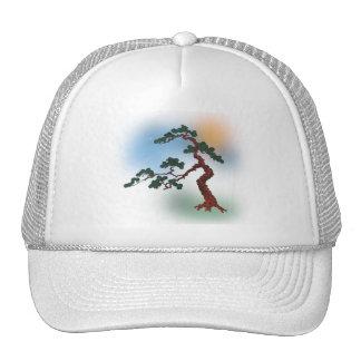 Bonsai 07 cap