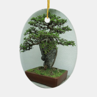 bonsai ceramic oval decoration