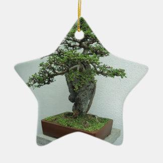 bonsai ceramic star decoration